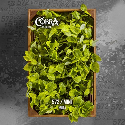 Купить Кальянная смесь Cobra Origins 50гр Мята за 8,90 в магазине Кальянная Республика